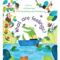 Usborne Lift-the-Flap First Questions and Answers What are Feelings?